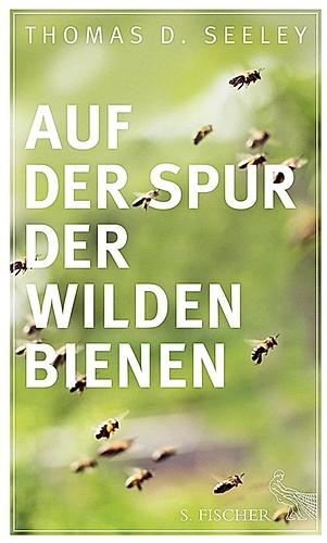 Auf der Spur wilder Bienen