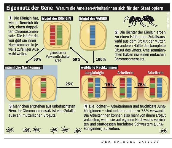 Eigennutz der Gene